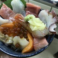 [北海道] 浦河町賞鳥、美味鹿肉火鍋、手作大漁旗、手作海鮮丼體驗 @amarylliss。艾瑪[隨處走走]